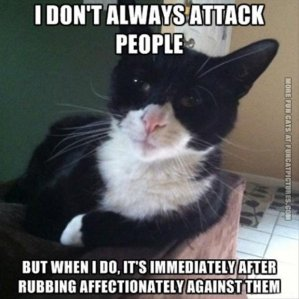 Cat poster: I don't always attack people, but when I do it's immediately after rubbing affectionately against them.
