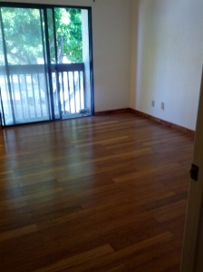 Empty room with wood floor